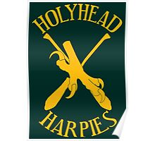 The Holyhead Harpies Poster
