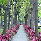 Calligraphy Greenway by sketchpoet