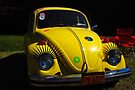Anybody seen Herbie? by John Schneider