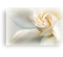 White Gardenia Metal Print