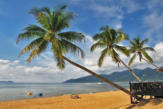 Bounty Island.... by Adri  Padmos