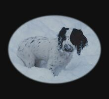 Spaniel In the Snow Kids Clothes