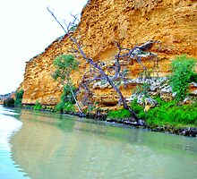 Murray River scene by imaginethis