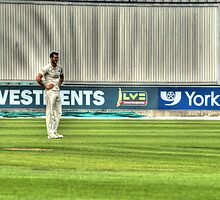 Cricketer by Andrew Pounder