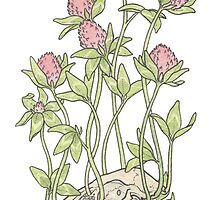 Red Clover All Over by Laurel Varian