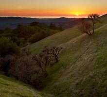 Pacific Ocean from Russian Ridge by Matt Tilghman