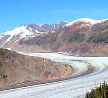 Panoramic Salmon Glacier by zumi