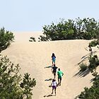 Climbing the Dunes by WeeZie
