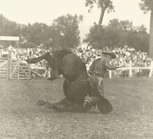 Jack Wade Tumbling The Bronc by Robert Stanford
