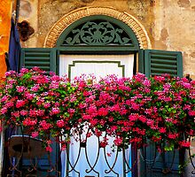 Verona Balcony Flowers, Italy by David J Baster