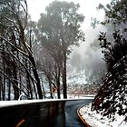 Road to Mt Buffalo by DavidsArt
