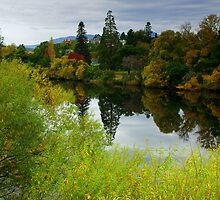 Reflections in the Derwent, New Norfolk, Tasmania by imaginethis