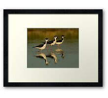 Posing Stilts Framed Print