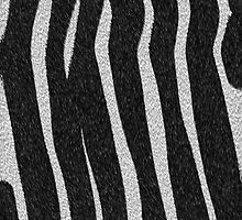 Real Zebra Fur by waqqas