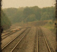 Railroad Track 2 by tonyaleigh