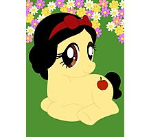 Pony Snow White Photographic Print