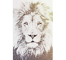The Intellectual Lion Photographic Print