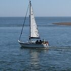 Sailing Boat - Exmouth by Antony R James