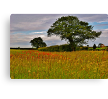 North Norfolk Field Canvas Print