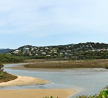 Aireys Inlet by Steven  Agius