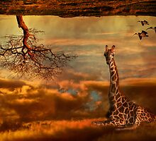 Dream Africa by Julie Begg