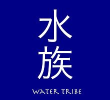 Avatar: The Last Airbender - Water Tribe by GoldLantern