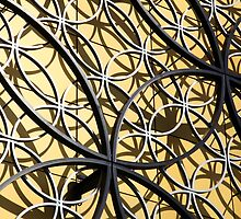 Gold Rings by John Dalkin