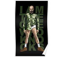 Walter Knocks Poster