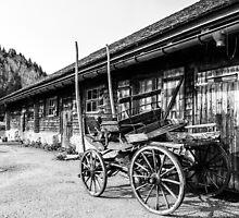 Wagon and wood pile by Alan Robert Cooke