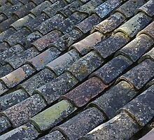 Alhambra Roof Tiles by MikeSquires