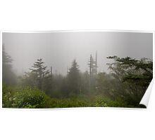 Through the Fog Poster
