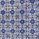 Portugal Tile Number Fifteen by Michael Kienhuis