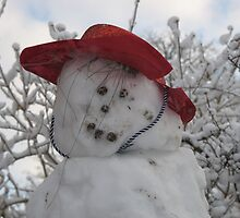 Frosty the snowman  by Rosie Newman