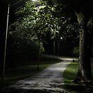 In the Park after Dark by elasita