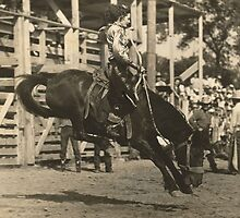 Margie Greenough On Bronc - 1943 by Robert Stanford