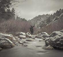 Winter Flyfishing by Jason  Fitzgibbon