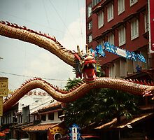 Chinese Dragon by Fike2308