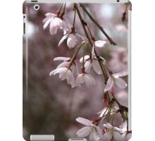 Whisper in the Breeze iPad Case/Skin
