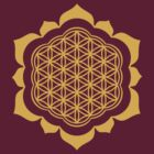 Flower of life - Lotus Flower, sacred geometry, Metatrons cube by nitty-gritty