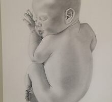 Newborn by Kate Ellis