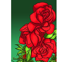 A Rose for any Occasion Photographic Print