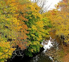autumn afternoon on Silver Crick by WonderlandGlass