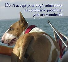 Sayings 'Dont Accept your Dogs admiration that you are wonderful' by BBBango