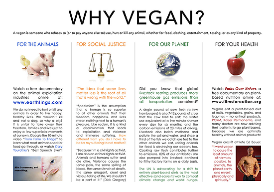 Why Vegan Print by trekvix