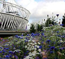 Olympic park by matttyers