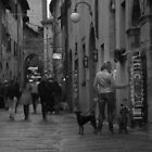 Images from Italy by lindy sherwell