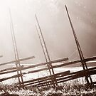 14.9.2013: Old Fence by Petri Volanen