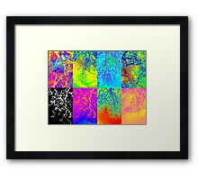 Collage of 8 trees bright colorful colourful andy warhol style image Framed Print