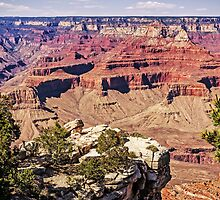 From the South Rim - Grand Canyon Arizona USA by TonyCrehan