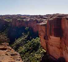 Kings Canyon rim walk by Trudi Skinn